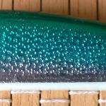 Mangianza 7,5 cm alicst